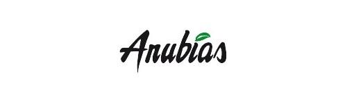 Anubia Plants
