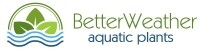BetterWeather